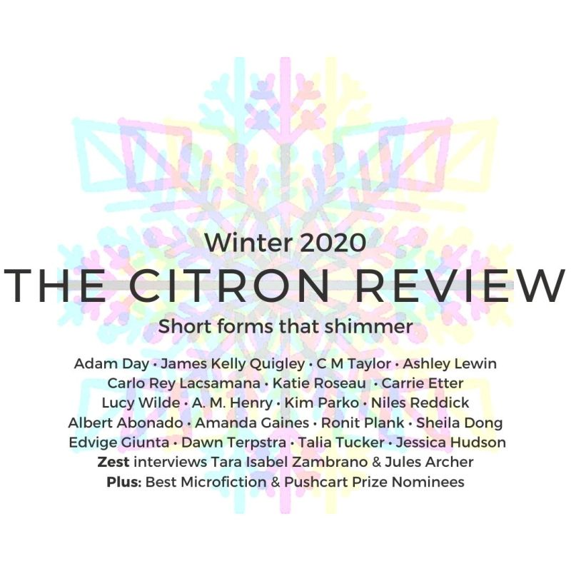 Winter Promo, The Citron Review